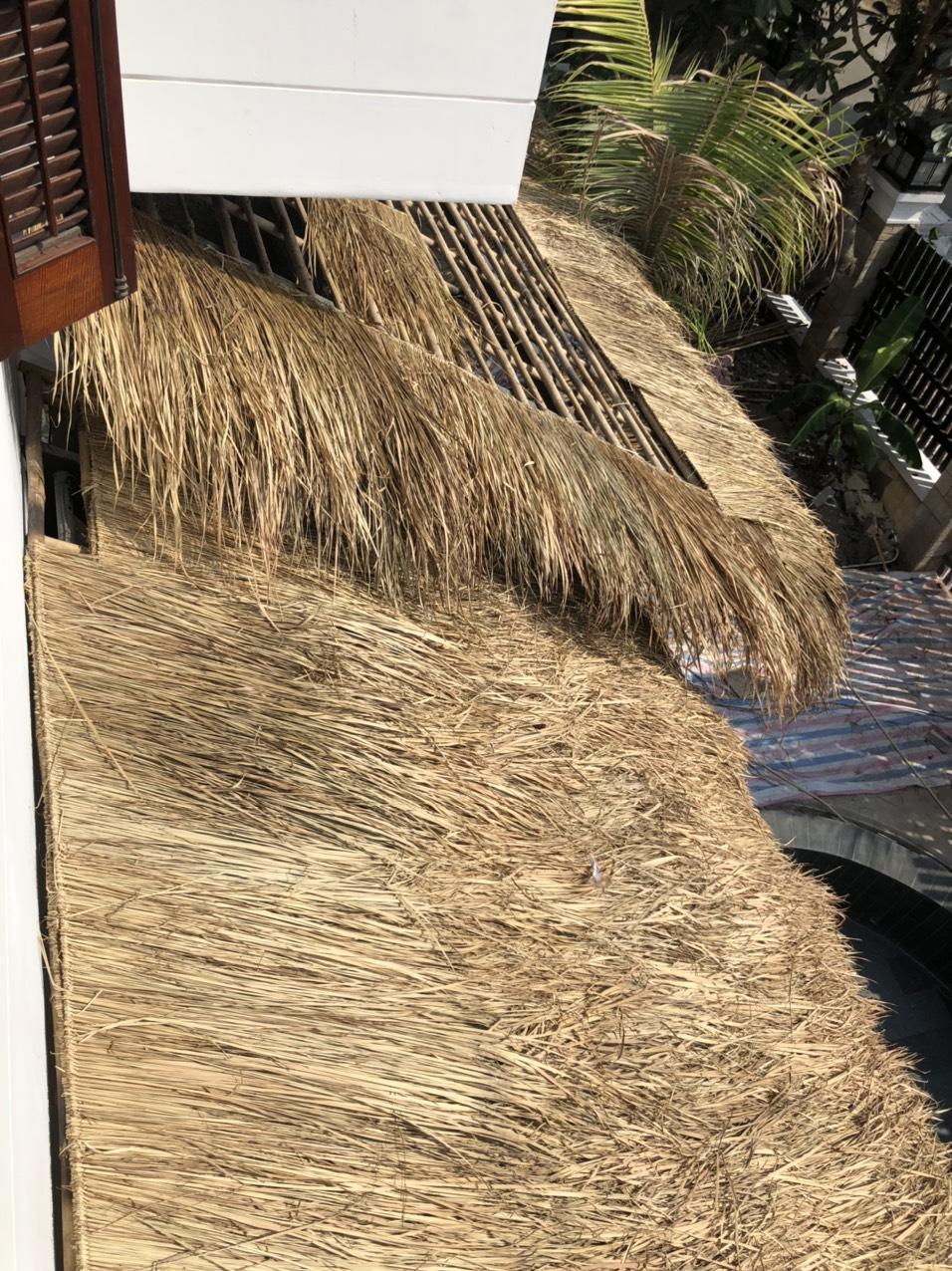 Thi công lợp mái nhà bằng lá cỏ tranh