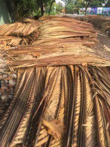 Lá dừa nước