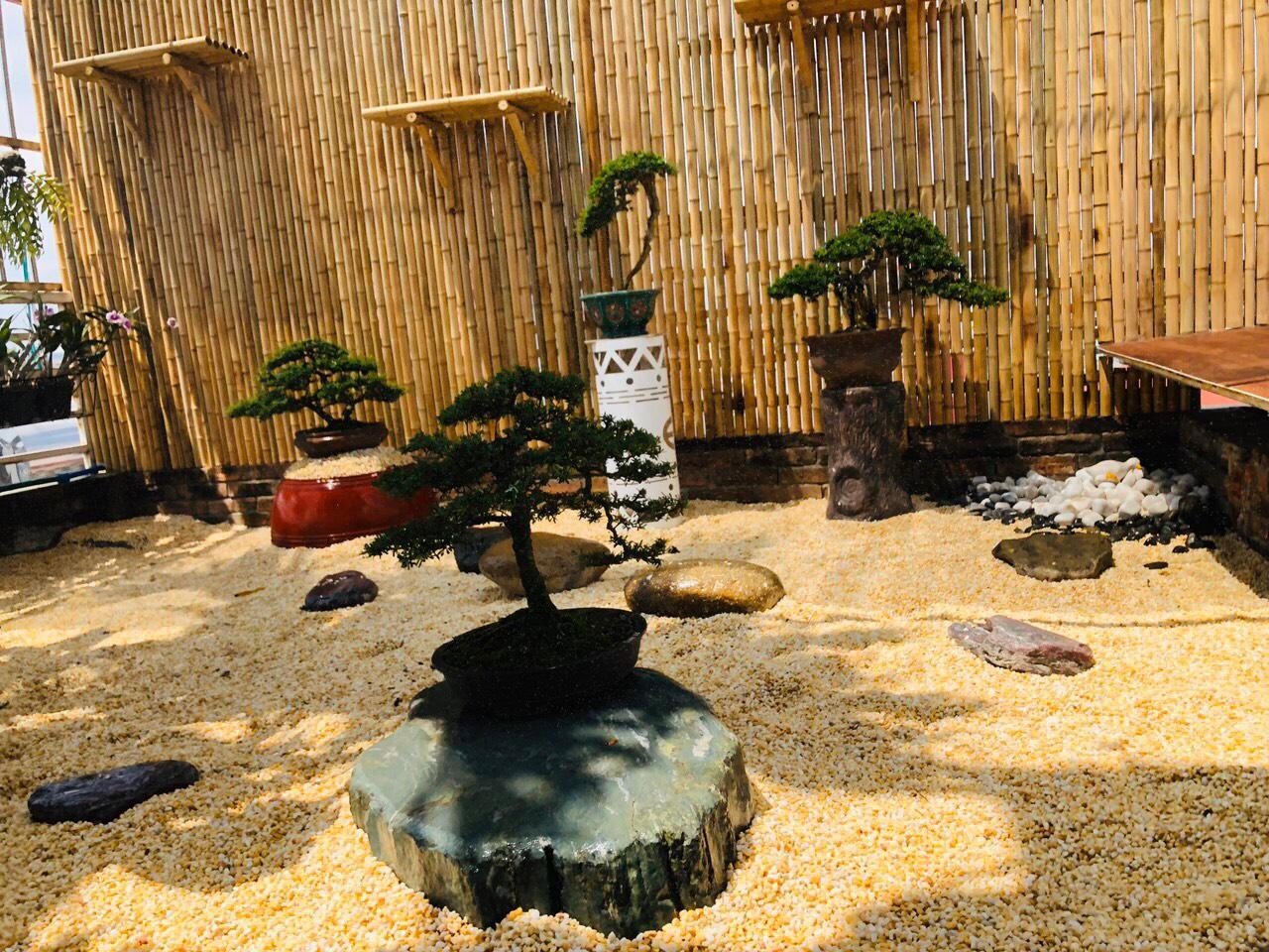 Trang trí tre trúc cho sân vườn